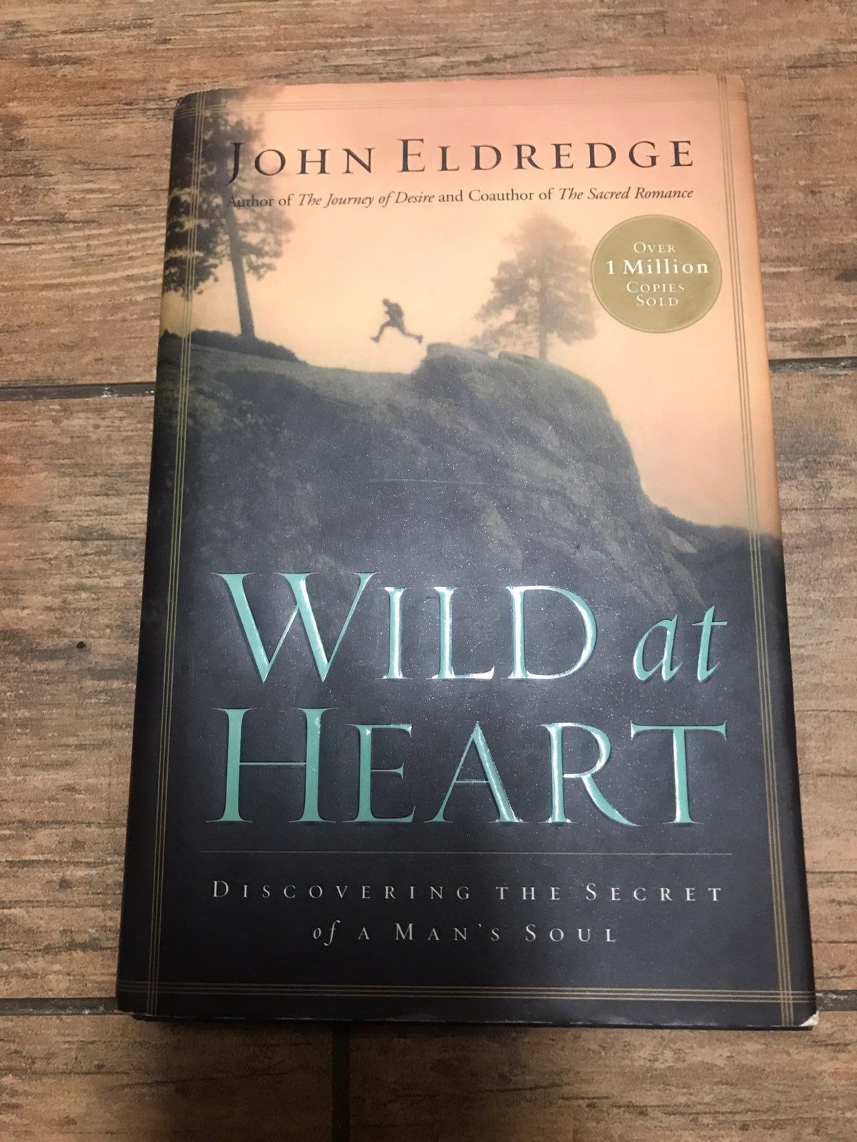 wild at heart essay There would be no point in tempting you to read this entire essay by leading the wild popularity of a books like wild at heart—books that humanize god and.
