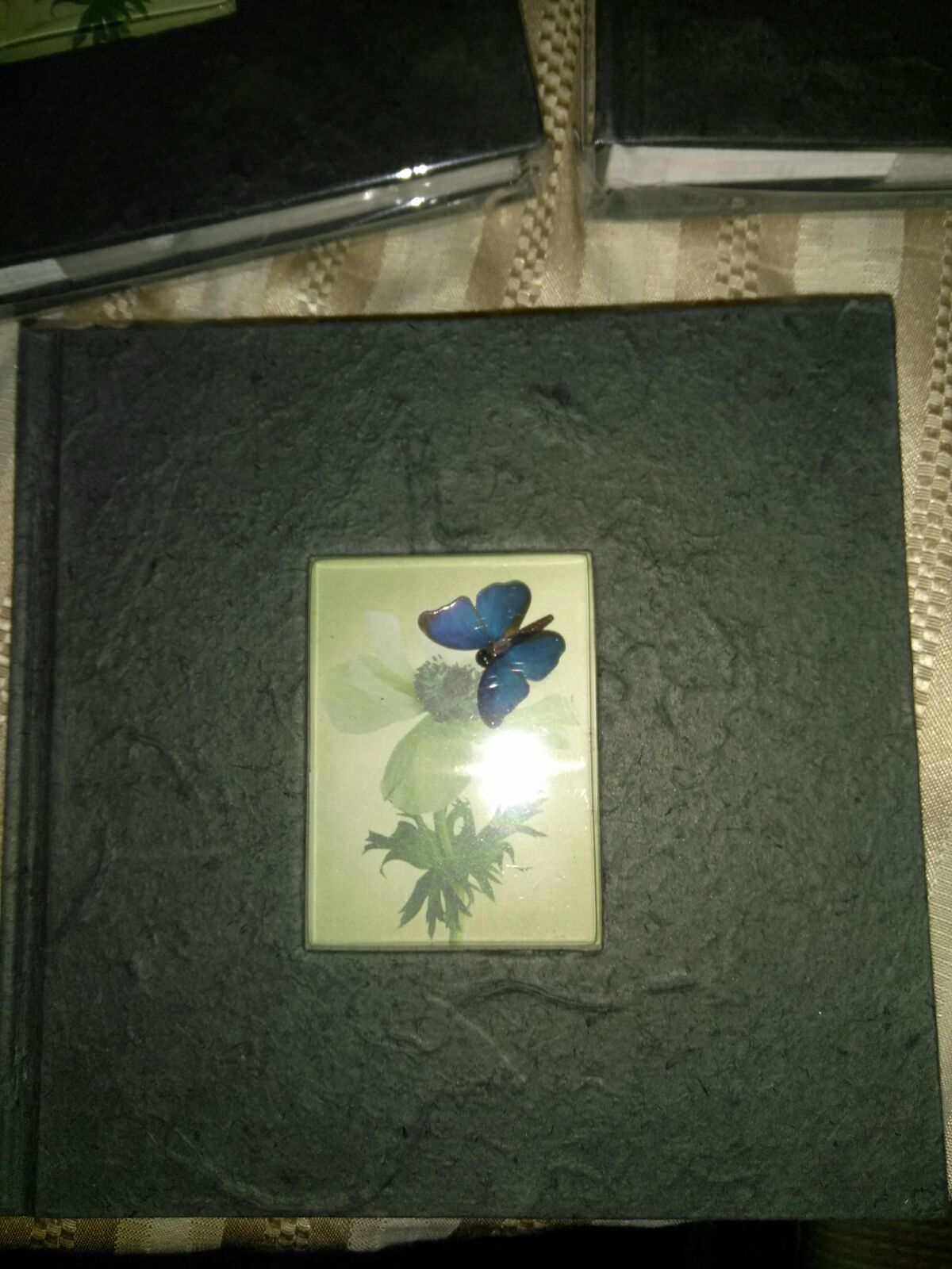 3D butterfly photo picture books