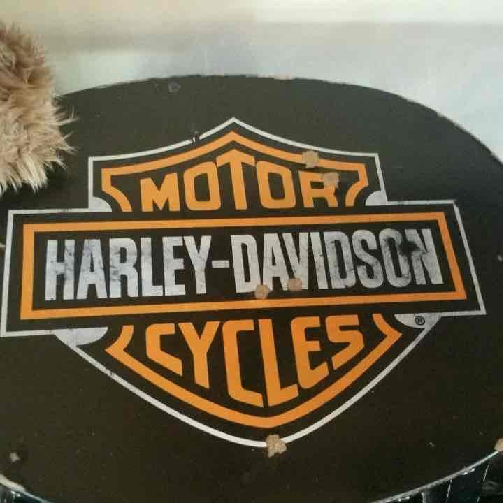 Harley Davison stepstool and Baer set