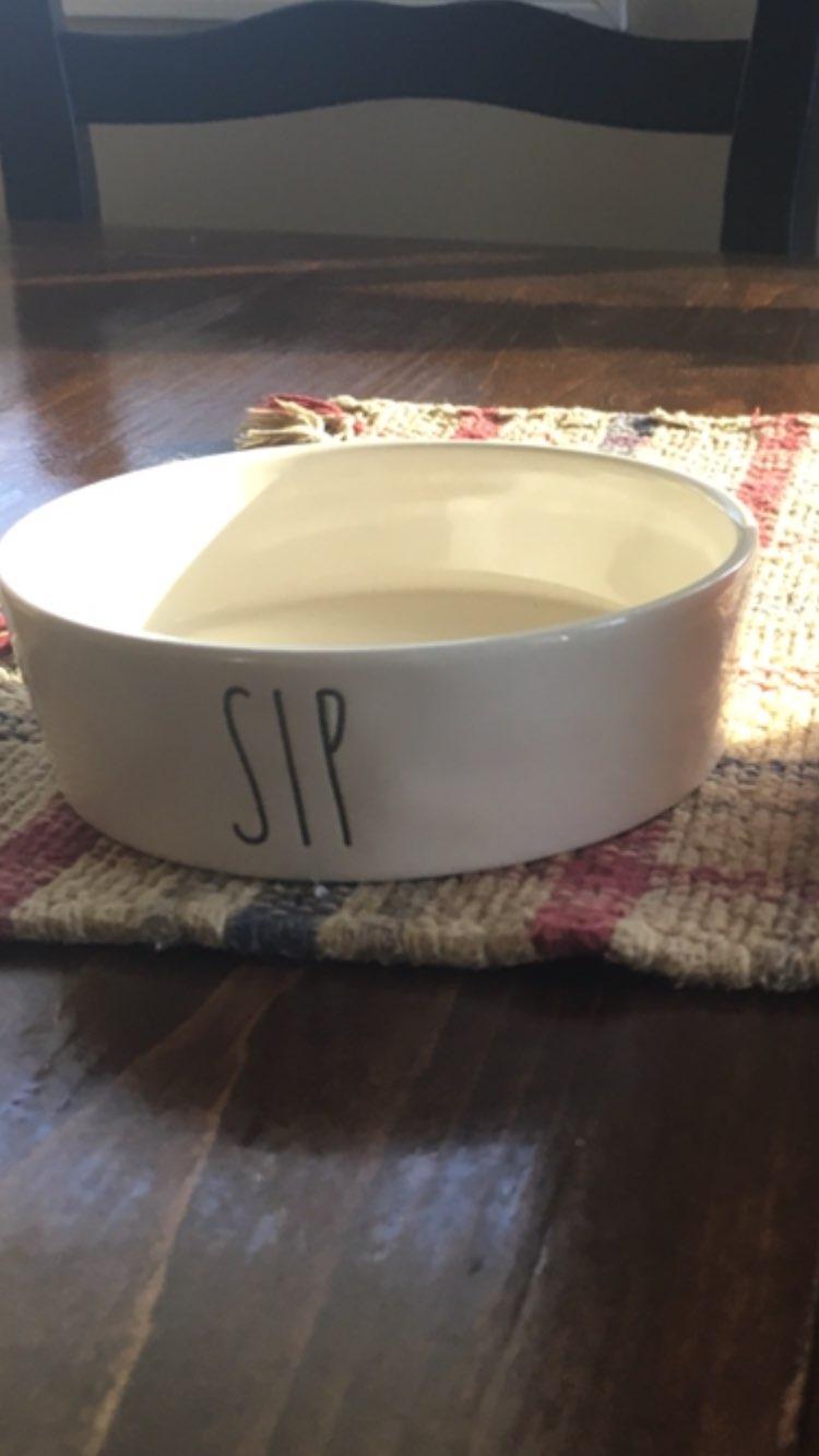 Small Sip Cat Bowl
