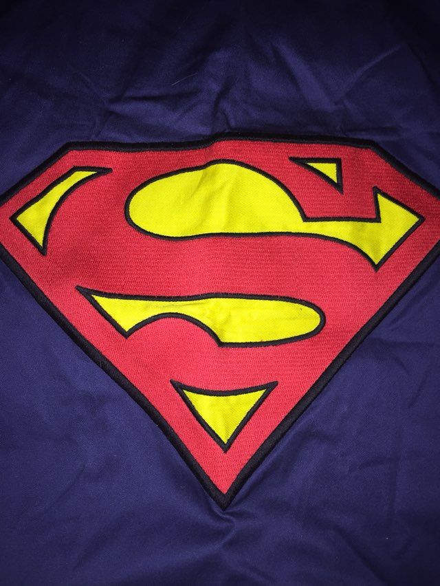 Pottery Barn Superman Sham