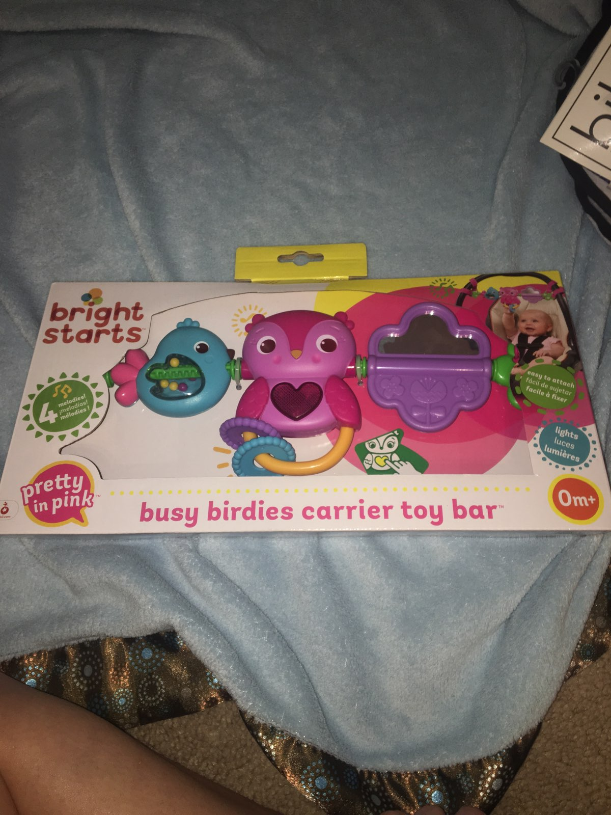 Busy Birs Carrier Toy Bar