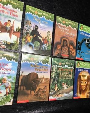 Magic Tree House Book Bundle for sale