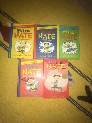 Big Nate Book Lot for sale
