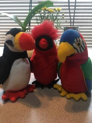 Used, TY Beanie Baby Birds for sale