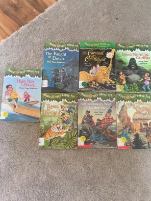 Magic Tree House for sale