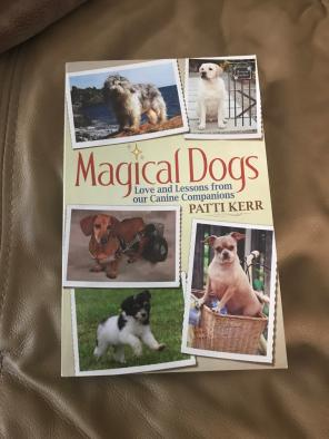 Used, Magical Dogs Book for sale