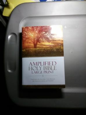 Large Print Amplified Bible for sale