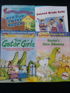Used, Classroom Library Books - Grades 2/3 for sale