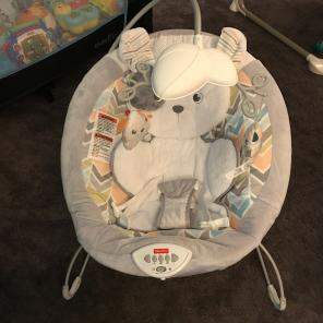 Baby's Snugapuppy bouncer Chair Seat, used for sale