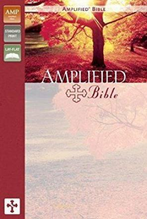 Zondervan  Amplified Bible  Navy leather for sale