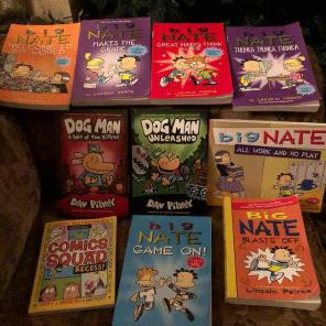 Big Nate Books for sale
